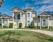 10509 Cromwell Grove Terrace, Orlando image