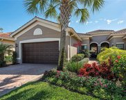 13391 Silktail Dr, Naples image