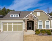172 Little Gem Ct, Griffin image