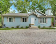 2821 Cozy Acres Rd, Mount Pleasant image