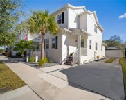 11235 Moultrie Place, Tampa image