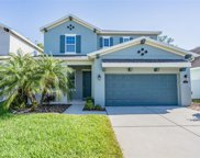 11315 Quiet Forest Drive, Tampa image