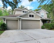 7725 Stoneleigh Drive, Land O' Lakes image