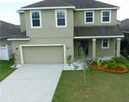 30814 Satinleaf Run, Brooksville image
