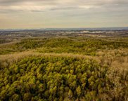 259 acres Pleasant Ridge Rd, Talbott image