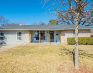 427 Holly Street, Grapevine image