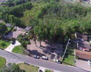 Blossom Avenue, Tampa image