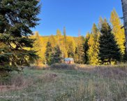 562 Fortyniner Ln, Bonners Ferry image