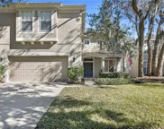 7322 Brightwater Oaks Drive, Tampa image