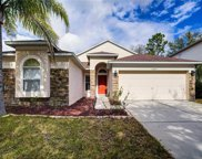 15647 Leatherleaf Lane, Land O' Lakes image