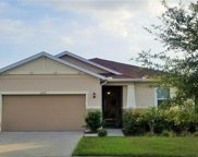 11537 Southern Creek Drive, Gibsonton image