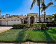 3556 Florian Terrace, Palm Harbor image