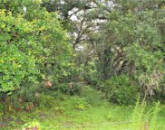 Osteen Maytown Road, Osteen image