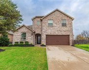 217 Turnstone Drive, Little Elm image