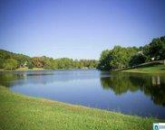 1085 Macdonald Lake Rd, Springville image