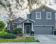 12304 Fairlawn Drive, Riverview image