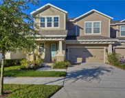 14614 Rocky Brook Drive, Tampa image