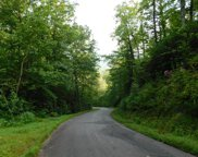 Tr E Chairmaker Drive, Hayesville image