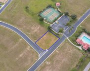 233 Snowy Orchid Way, Lake Alfred image