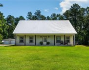 539 Ed Coleman Road, Dry Prong image