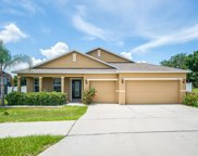 1375 Water Willow Drive, Groveland image