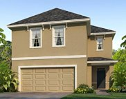 9037 Water Chestnut Drive, Tampa image