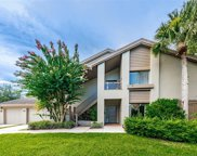 3058 Landmark Boulevard Unit 1203, Palm Harbor image