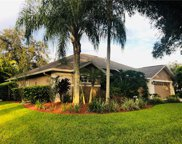 10313 Carroll Cove Place, Tampa image