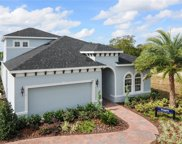 17136 Goldcrest Loop, Clermont image