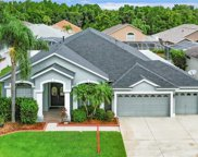 10126 Queens Park Drive, Tampa image