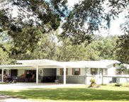 17639 Palamino Lake Drive, Dade City image