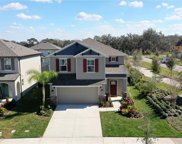 5320 Little Stream Lane, Wesley Chapel image