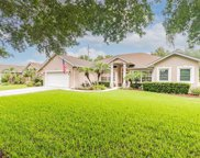 10727 Masters Drive, Clermont image