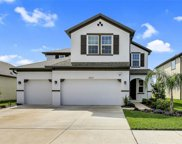 11927 Bahia Valley Drive, Riverview image