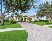 12071 Wicklow Ln, Naples image