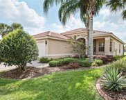 15712 Crystal Waters Drive, Wimauma image