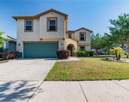 11117 Goldenrod Fern Drive, Riverview image