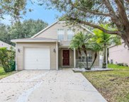 5129 Anclote River Street, Wesley Chapel image