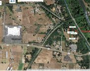 XX State Route 507  SE, Yelm image