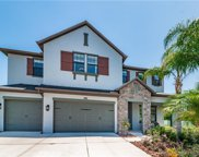 12615 Lillyreed Court, New Port Richey image