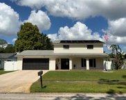 4017 Arroyo Lane, Tampa image
