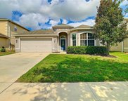 18447 Red Willow Way, Land O' Lakes image