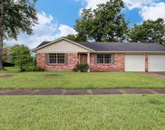 4103 Lou Anne Lane, Houston image