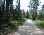 191 Wilkinson Swamp Road, Effingham image