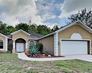 12244 Shearwater Drive, New Port Richey image