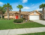 1193 Muscovy Drive, Spring Hill image