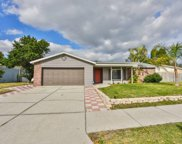 11216 Fiddlewood Drive, Riverview image