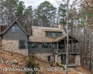 484  County Road 2026, Crane Hill image