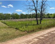 Little River Road Lot 24, Marksville image