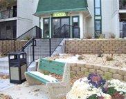 10501 Cedar Lake Road Unit #317, Minnetonka image